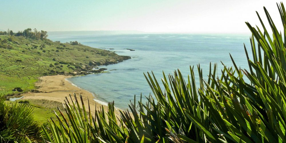 """BELL'ITALIA.<br> """"Costa del Vino. Nella Sicilia sud-occidentale, il mare selvaggio di Porto Palo di Menfi, premiato con la Bandiera Blu, abbracciato da 6.500 ettari di vigne: un'oasi di agricoltura di qualità strappata alla salsedine e favorita dal clima"""""""